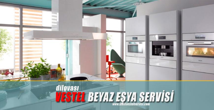 Dilovası Vestel Servisi