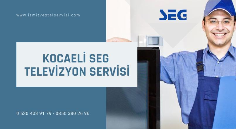 Kocaeli Seg Televizyon Servisi