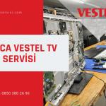 Darıca Vestel televizyon servisi
