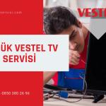Gölcük Vestel televizyon servisi